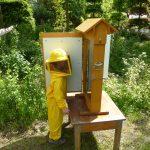 Bienenschaukasten am Gartengestaltungstag 2014